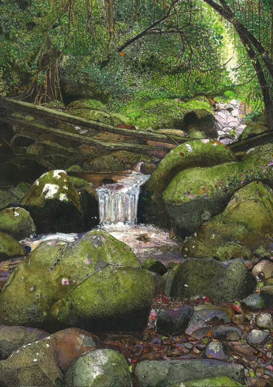 1-West-canungra-creek.jpg