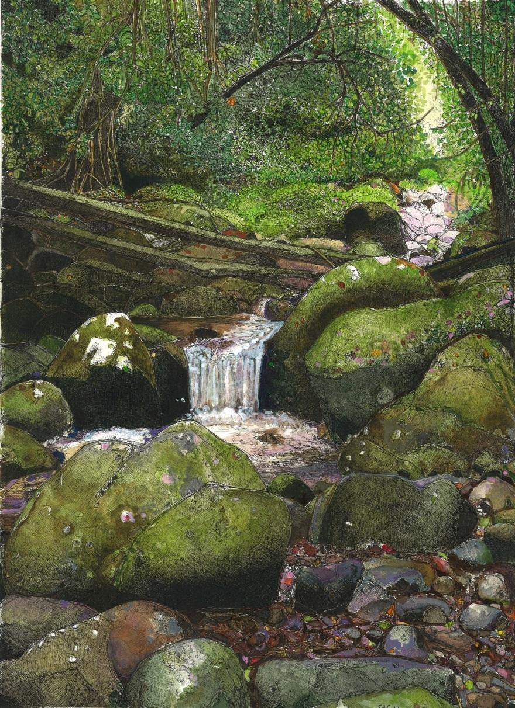 1 - West canungra creek