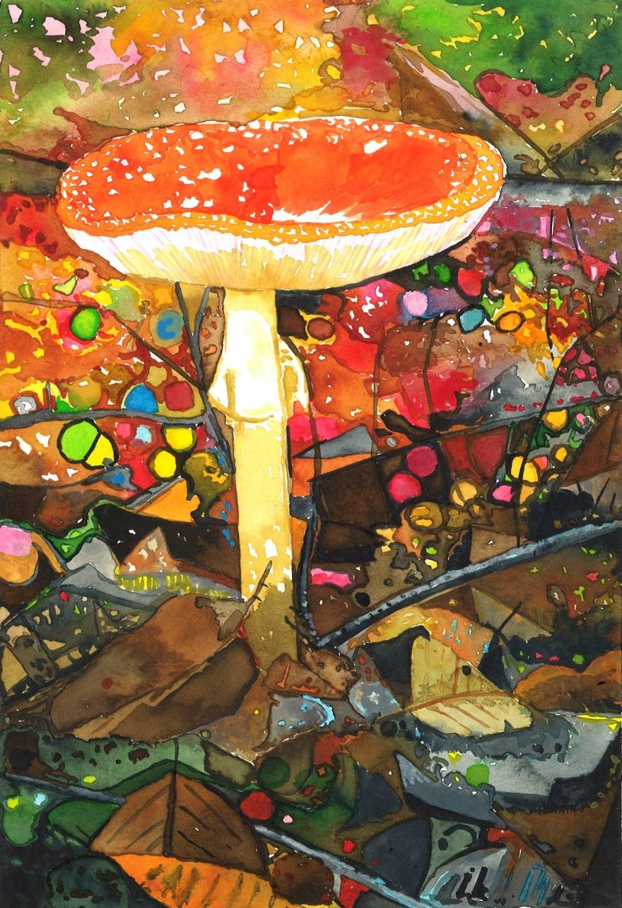 15-Fungi