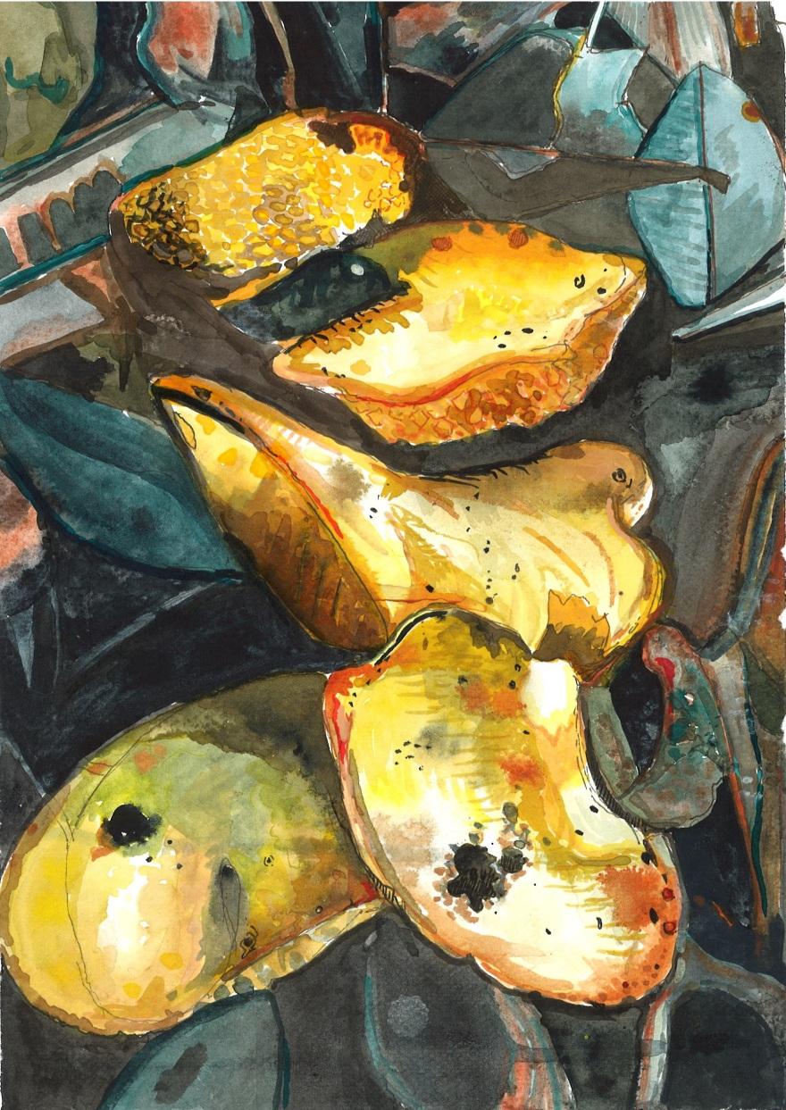 9-fungus painting